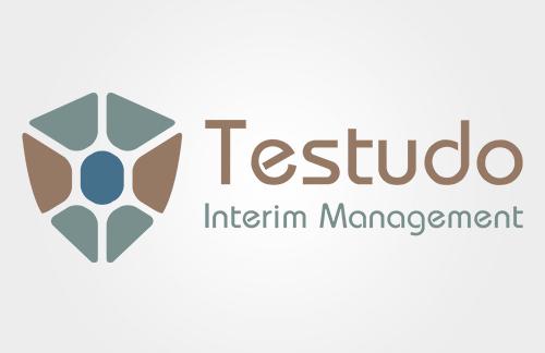 interim-manager-logo-ontwerp